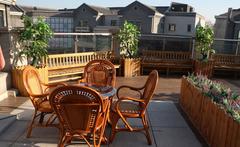 装修风水学中阳台植物如何选择