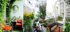 阳台改造 不晾衣服造个花园