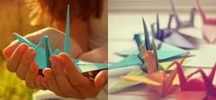千纸鹤的含义 千纸鹤的折法图解