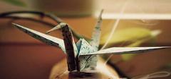 千纸鹤的传说  爱情千纸鹤有啥寓意