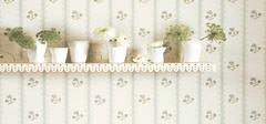 苏州梅雨季节如期而至 贴心送上家居墙纸防潮4大妙招