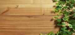 木板与木板年画的选材,你造吗