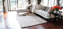 家庭地毯清洗的几个小妙招