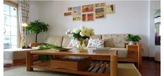 客厅植物该如何选择摆放才能带来风水气运
