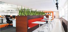 办公室内的屏风和植物的摆放风水