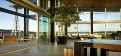如何正确运用植物改变办公室风水?
