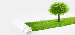 教你识别环保油漆的七个技巧