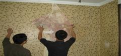 墙纸发霉怎么办?如何预防?