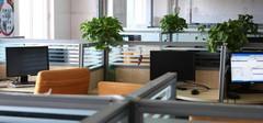 2015年办公室风水,找准自己的位置