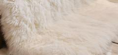 羊毛毯品牌介绍,哪些品牌的羊毛毯更舒适?
