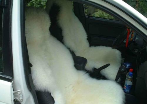 羊毛坐垫效果图