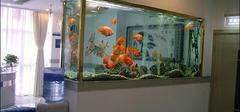 鱼缸的摆放位置有哪些要求?