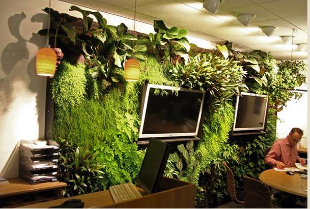 绿植装饰墙