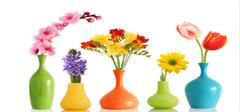 花瓶的搭配和选购技巧