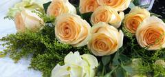 香槟玫瑰的花语是什么?