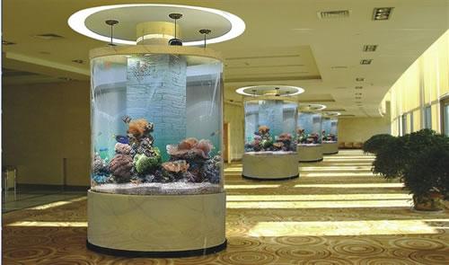 家里养鱼鱼缸注意
