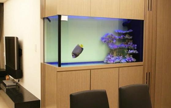 金鱼缸选购