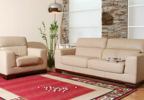 家用地毯效果图