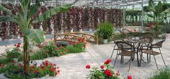 常见的生态餐厅种类有哪些?