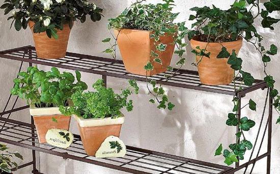 室内铁艺花架分类