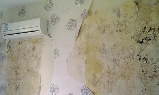 墙壁发霉怎么处理