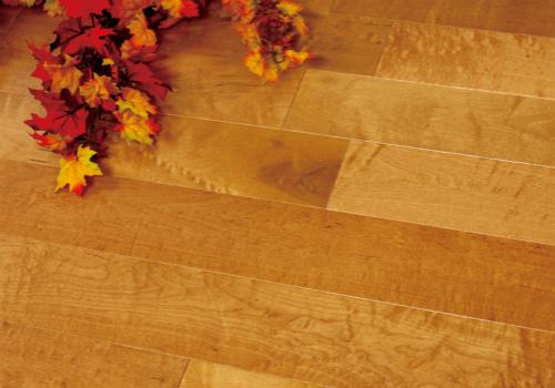 桦木地板效果图