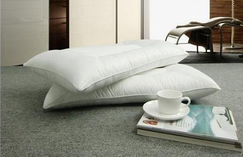 自制蚕砂枕