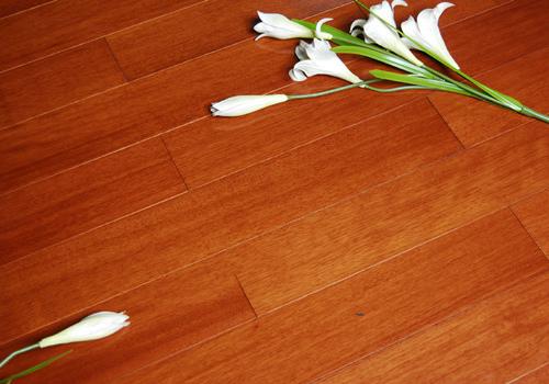 实木复合地板效果图