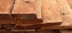 桤木的选购技巧及保养方法