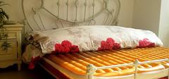 水床垫的简介,水床垫的优缺点