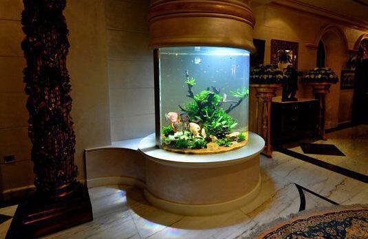 鱼缸的摆放风水