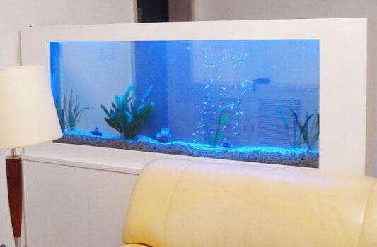 客厅养鱼风水