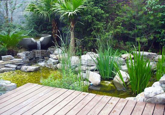 自然庭院景观
