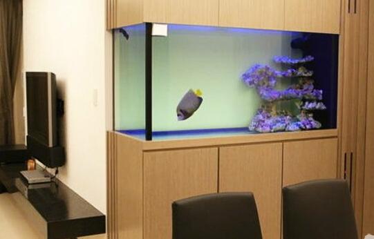 客厅金鱼缸风水
