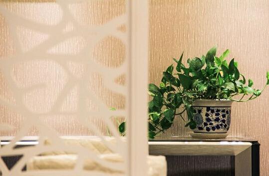 家居植物风水