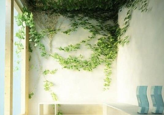 墙面创意设计