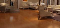 桦木地板的优缺点有哪些