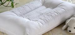 荞麦皮枕头简介,荞麦皮枕头的优点