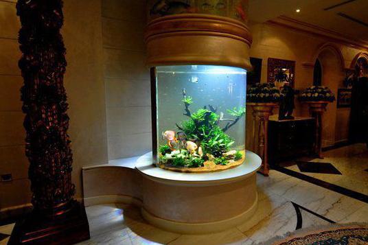 家居鱼缸的摆放风水