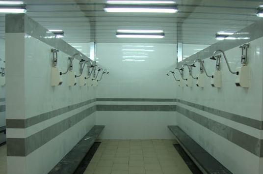 感应淋浴器,淋浴器