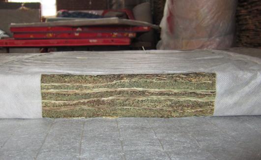 乌拉草的特点,乌拉草床垫