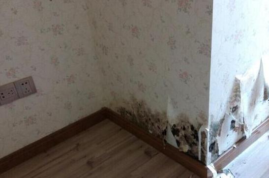 外墙漏水,地下室