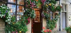 花店装修效果图案例欣赏