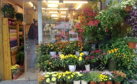 花店装修效果图案例