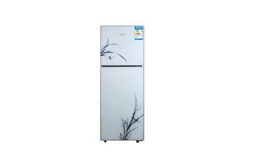 浪木冰箱,冰箱