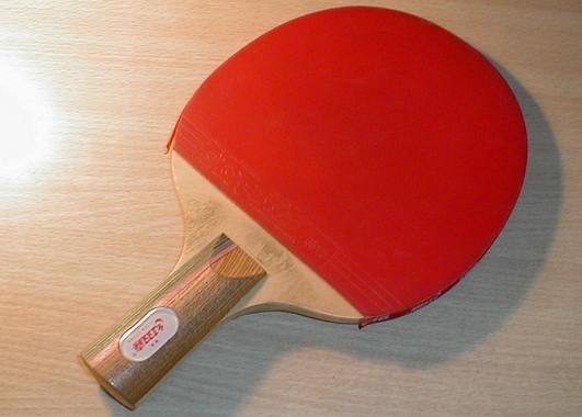 乒乓球拍品牌罗列