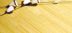 保养竹地板的窍门有哪些?