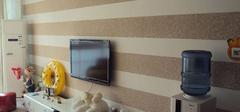 硅藻泥背景墙有哪些优点?