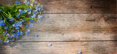 细木工板的选购要素有哪些?