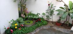 阳台花园设计,来自大自然的魅力!